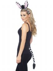 Zebra Dress-Up Kit